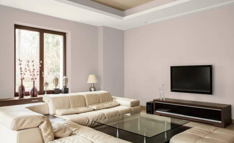 Дизайн интерьера. Фото. Природные цвета краски для стен. Готовые цветовые схемы для вашего дома.